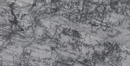 White Forest Marble