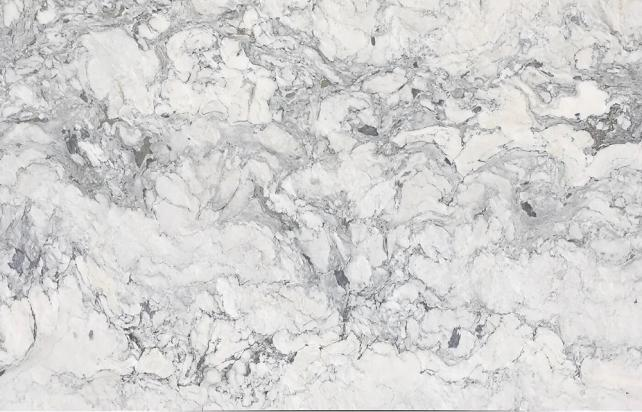 Winter Forest Marble